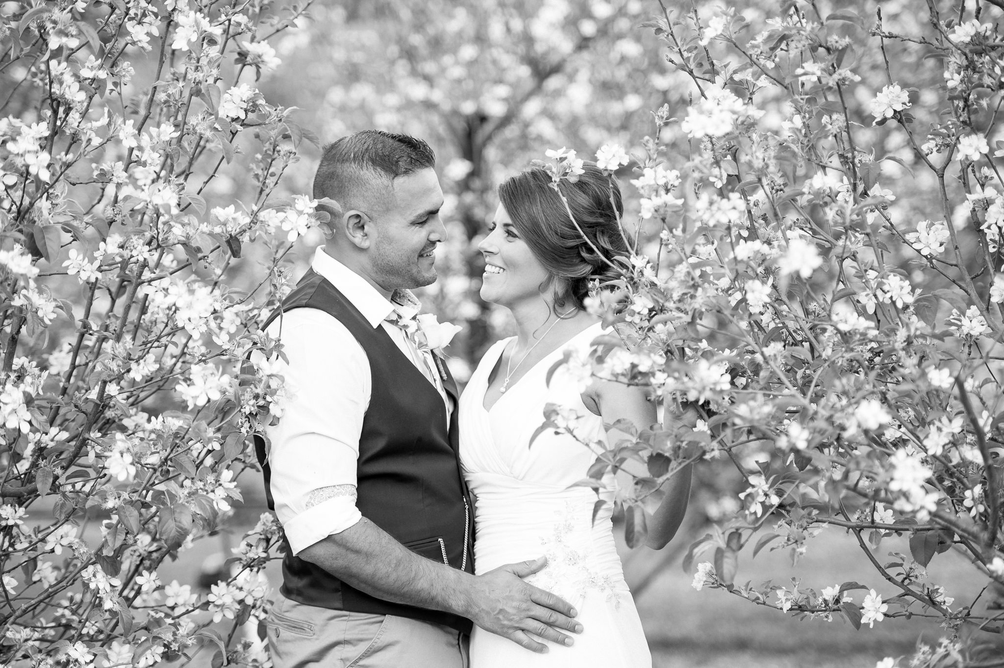 newlyweds in the appleorchard