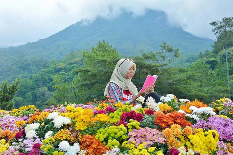 Taman dekorasi bunga