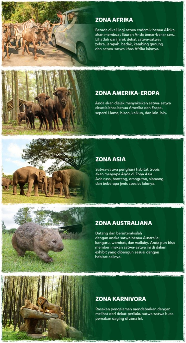 Zona Safari Adventure