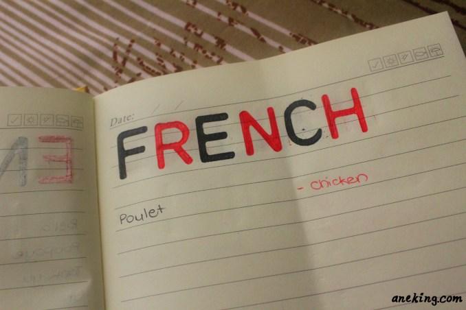 french minion language