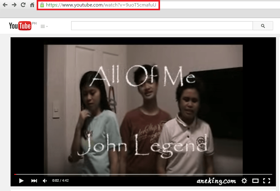 1. Type the link of the Youtube video in the address bar to view the it.