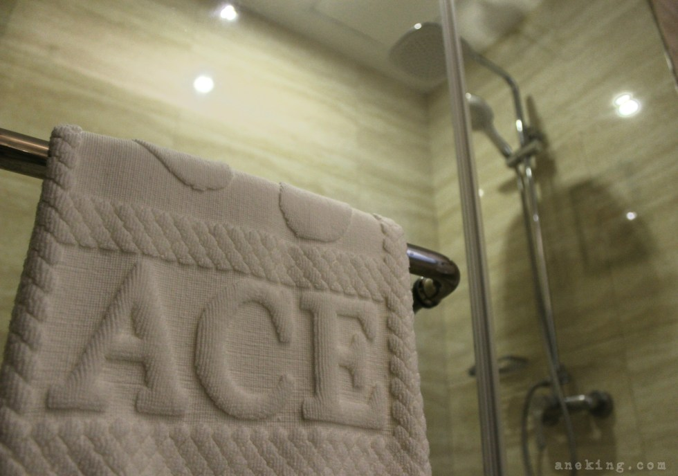 ace-bathroom