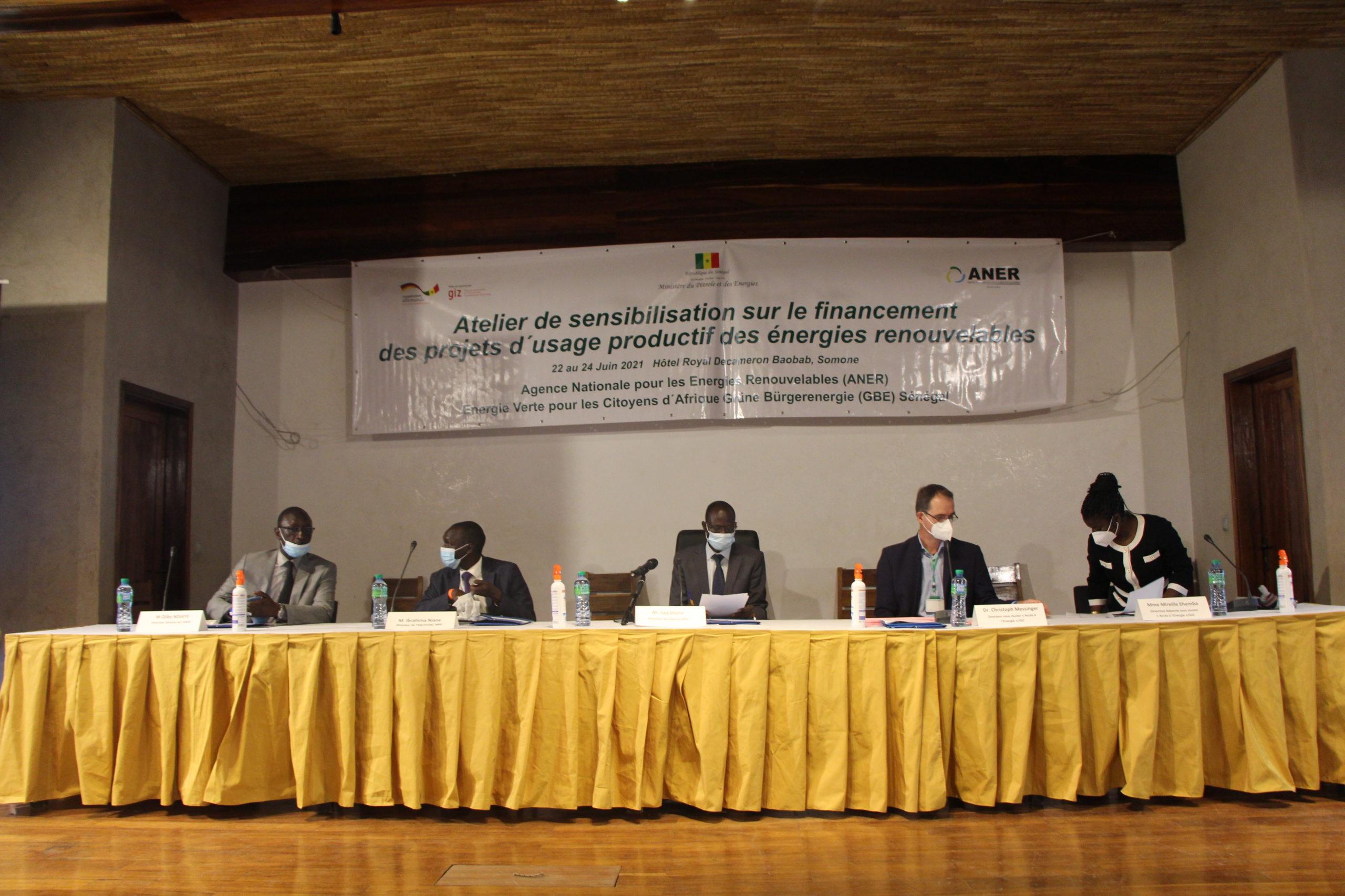 Atelier de sensibilisation des IFs et IMFs sur le financement des projets d'usage productif en énergie renouvelable.