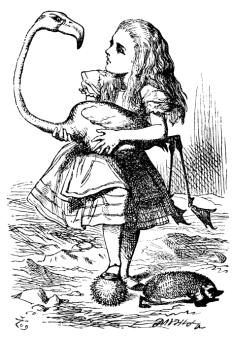 Illustration from AAIW by  John Tenniel