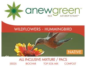 hummingbird_seedpacs