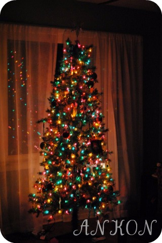 Family Christmas Tree 2011