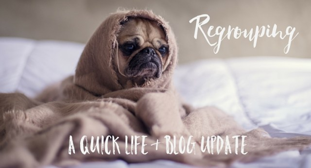 A Quick Life & Blog Update
