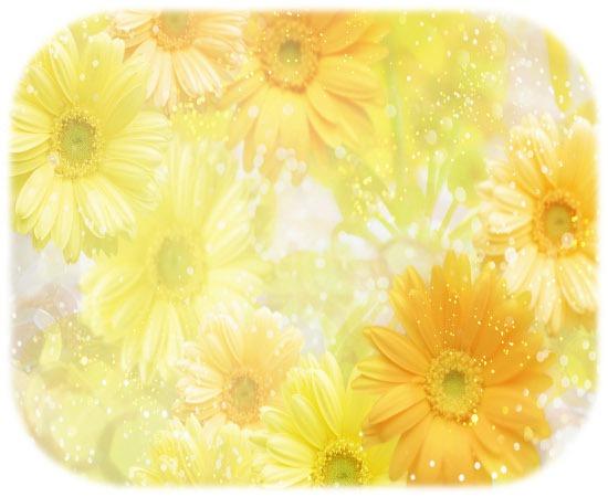 Background-Wallpaper-Flowers-40