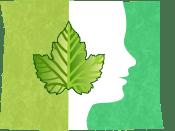 A New Leaf Logo