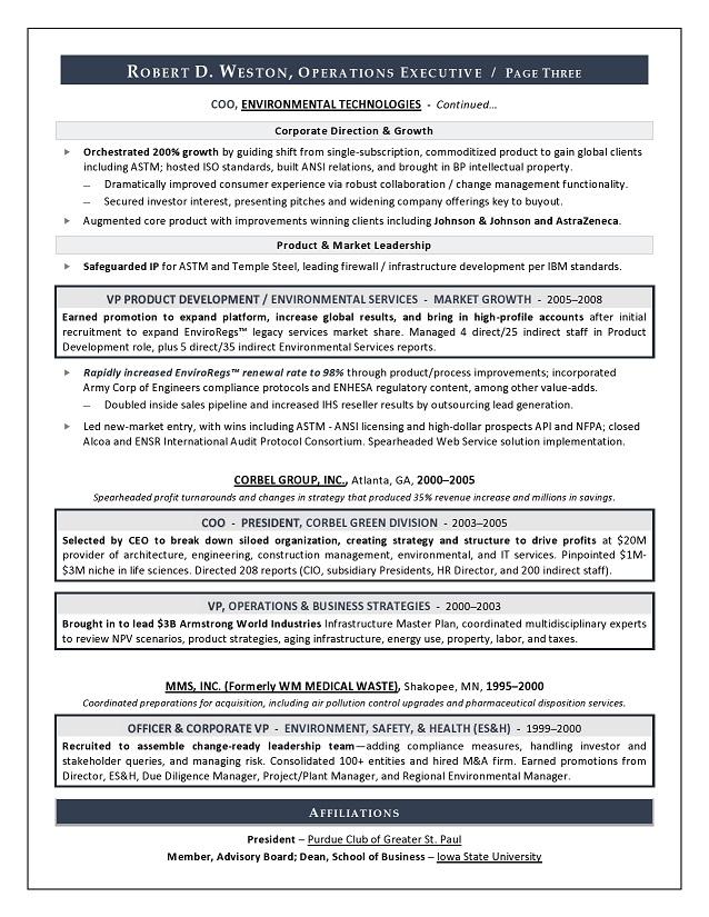 best executive resume writer sample resume coo amp gm resume writer