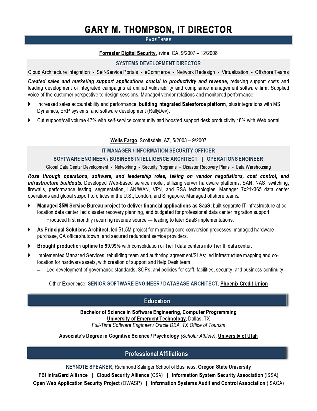 it director sample resume it resume writer technical resume writer