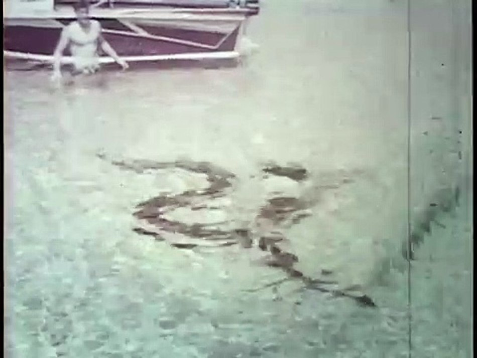 Ross Allen luchando contra una anaconda cerca de su bote.