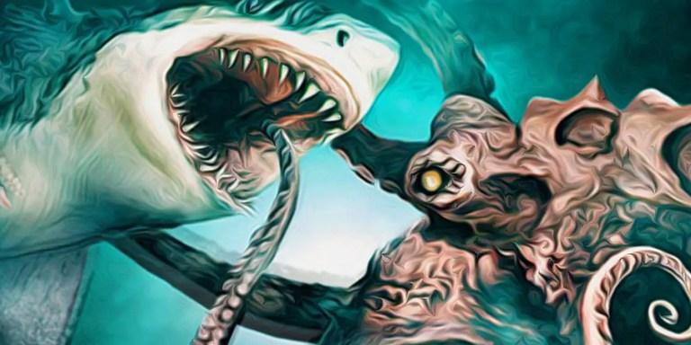 Tiburón versus Pulpo gigante, el asombroso caso del Acuario de Seattle
