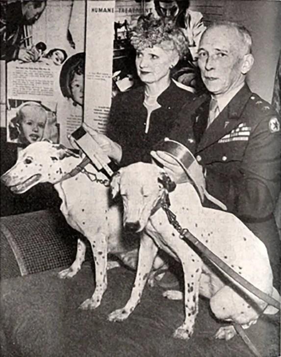 Fotografía de las perras Trixie y Josie, dos de los más famosos animales condecorados.