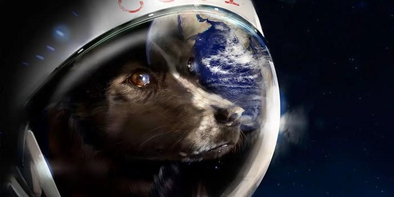 Laika, la perra que se convirtió en el primer ser vivo en viajar al espacio