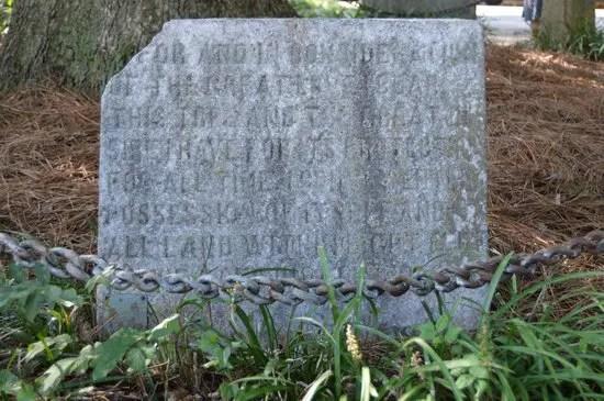 Detalle de la placa del árbol dueño de si mismo.