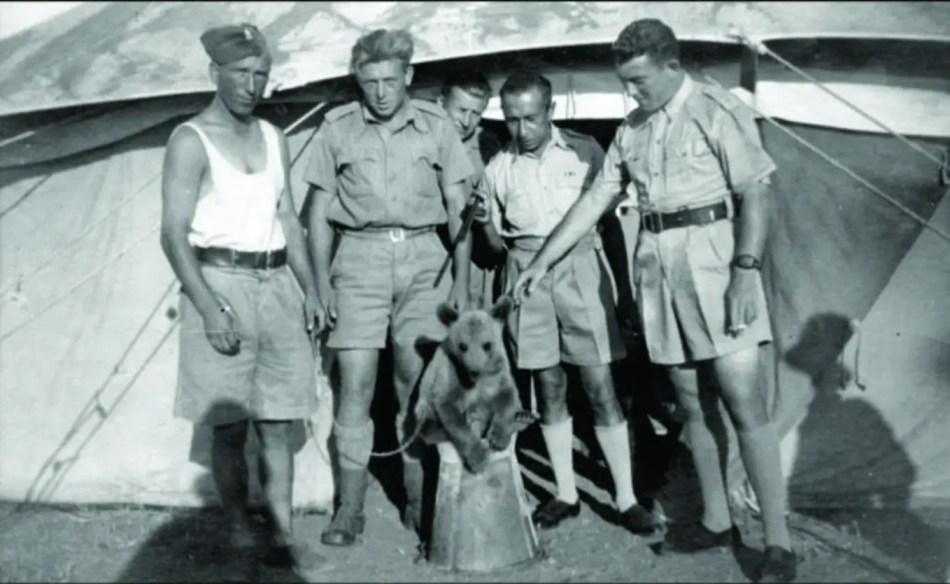 Fotografía de in osezno y un grupo de soldados frente a una tienda de campaña.