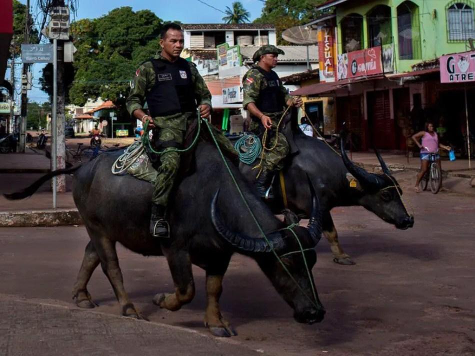 Dos oficiales de la policía militar de Pará patrullando las calles con sus búfalos.