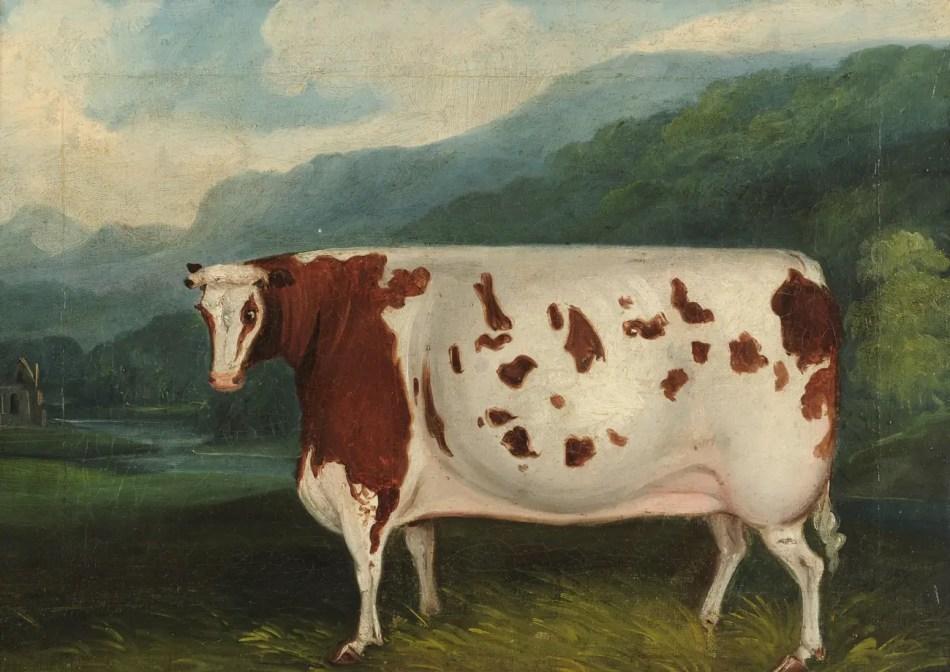 Pintura de una vaca victoriana pastando en las praderas inglesas.