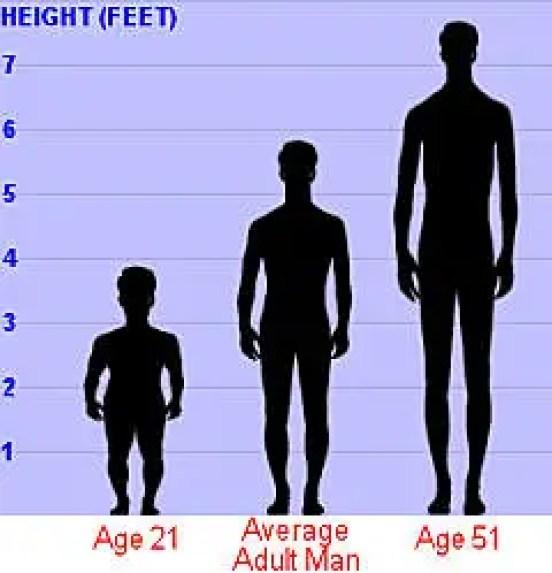 Esquema del crecimiento de Adan Rainer medido en pies y su altura a sus diferentes edades.