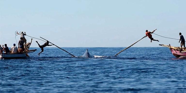 Los lamafas, la tribu de cazadores de ballenas que utilizan lanzas