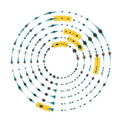 Diagrama de los anillos concéntricos o canales que producen el sonido.