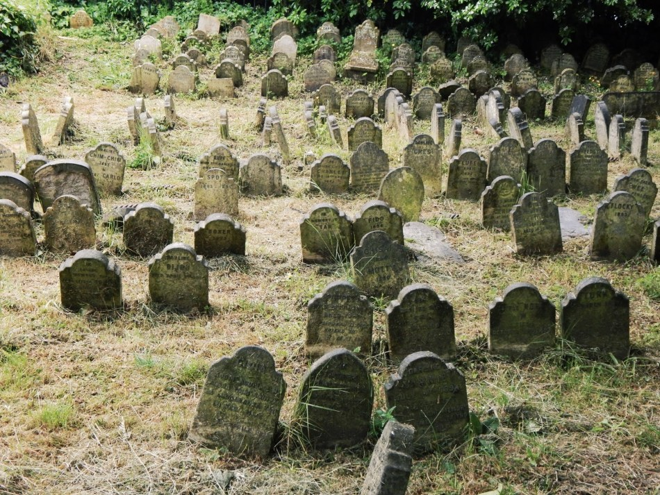 Varias de las lápidas en el cementerio de mascotas del Hyde Park.