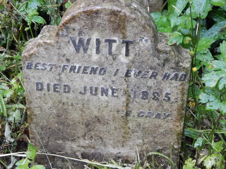 Tumba de la mascota llamada Witt.