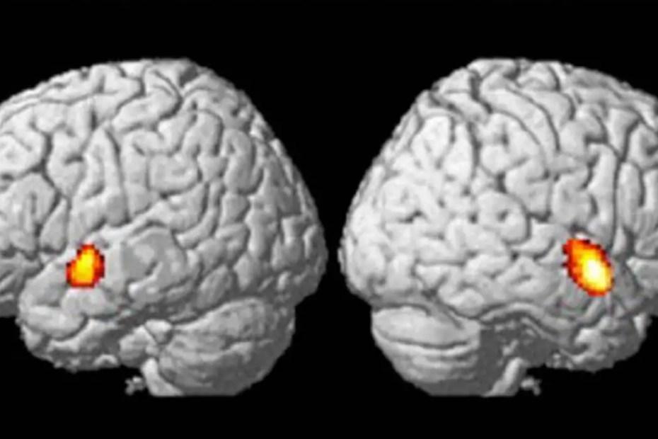Proceso de los estilismos auditivos como por ejemplo el efecto McGurk.