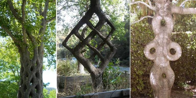 Tres arboesculturas distintas.