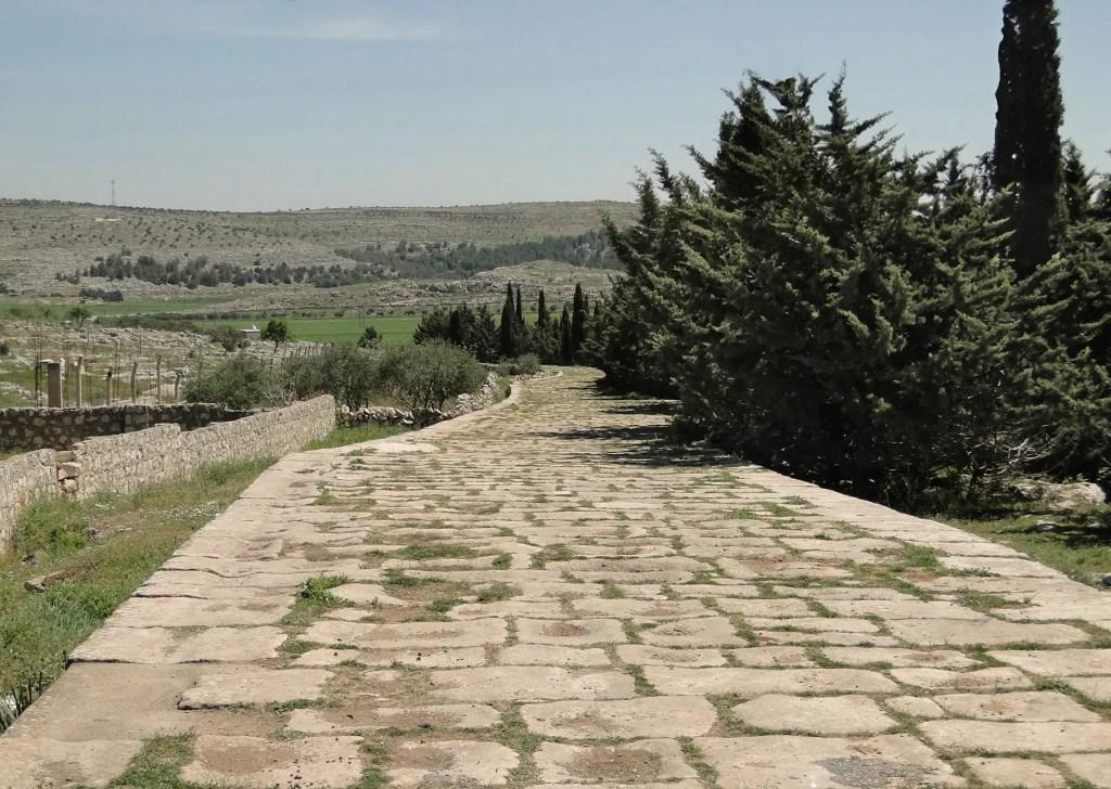Restos de un camino romano en Siria.