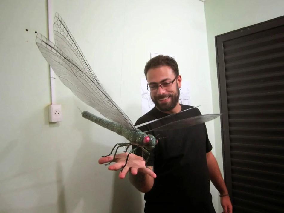 Hombre sosteniendo una reconstrucción de una Meganeura, el insecto más grande de la tierra.