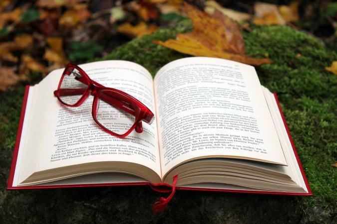 New November Novels