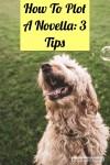 How To Plot A Novella: 3 Tips