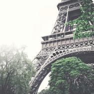 Paris-Angela-F-Johnson