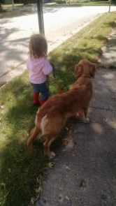 Child walking dog