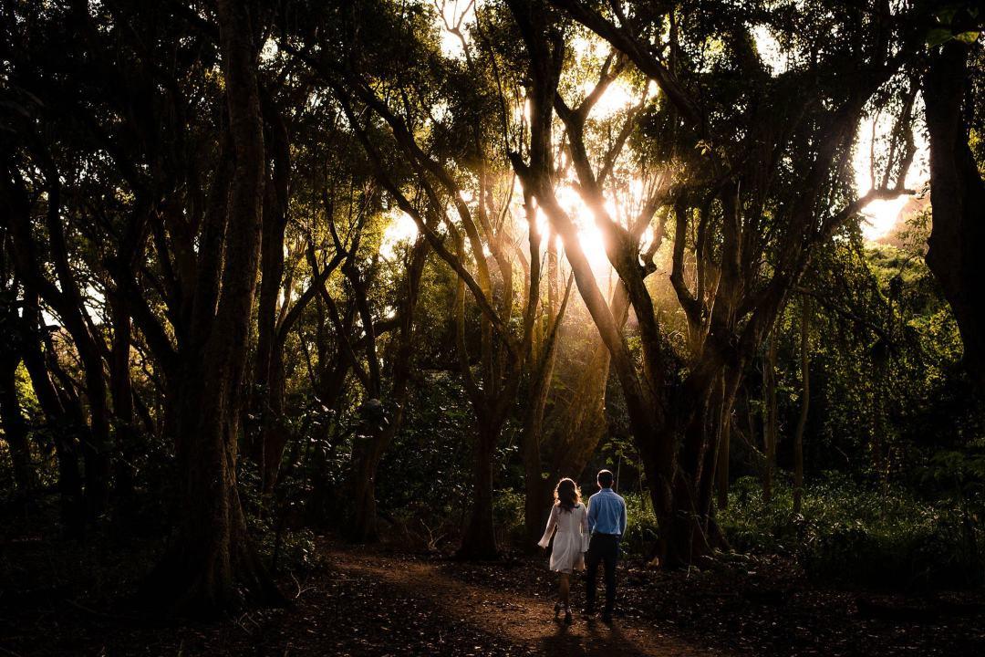 photos in honolua jungle in maui