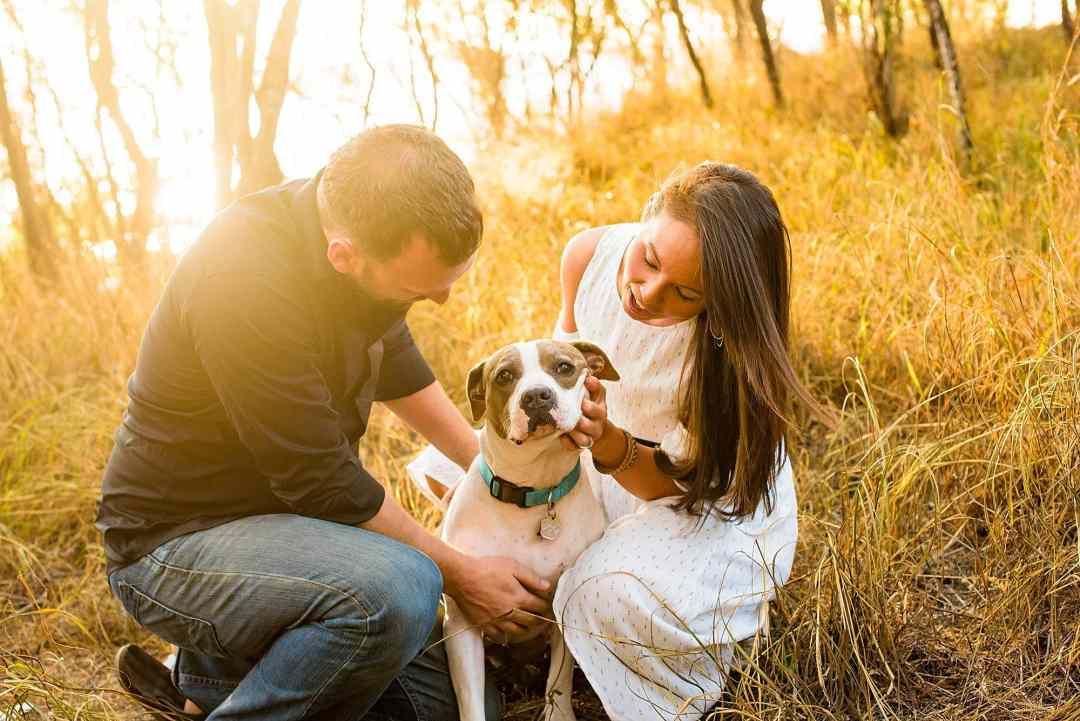 maui engagement photos with dog
