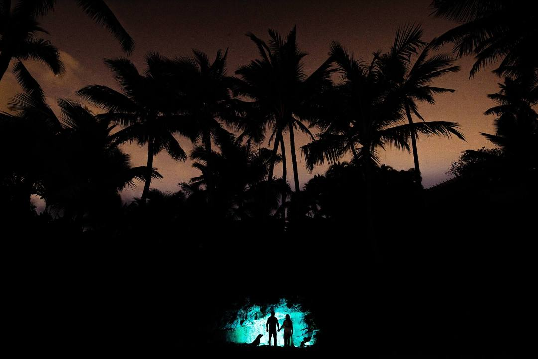 photos with palm trees and silhouetted couple with blue