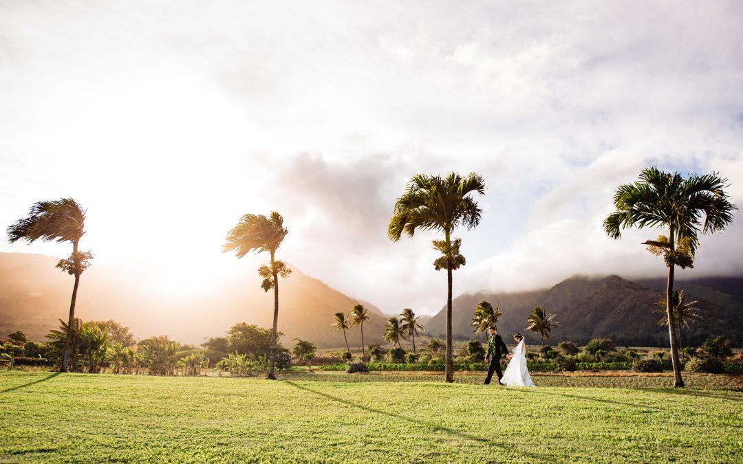 Maui Tropical Plantation Wedding | Melissa + Patrick