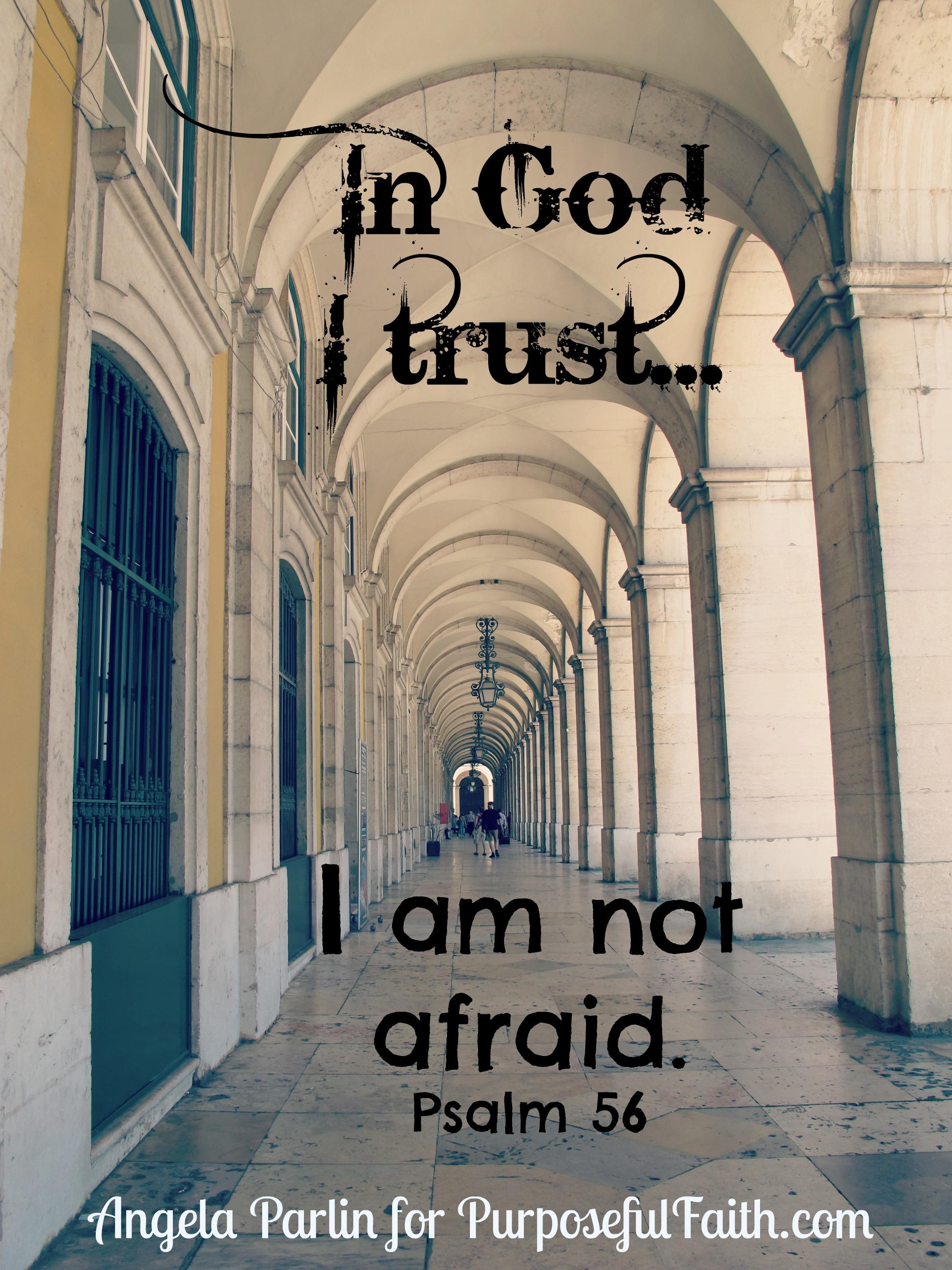 trust fear afraid