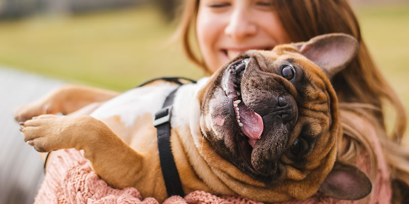 Why cleaners can be great for people with pets