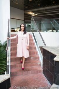 Blush Nursing Dress