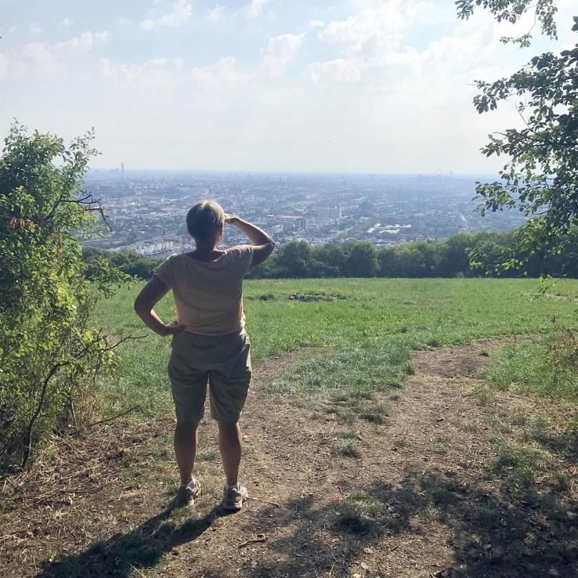 Blick von Hackenberg auf Wien