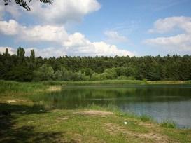 Angelpark-Thönse-1