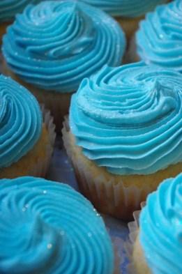 vanilla cupcakes, blue vanilla butter icing