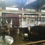baijumoutai_distillery