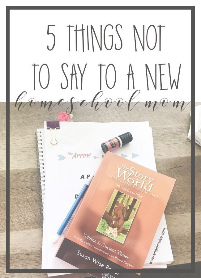 If you have a friend that is a new homeschool mom, there are a few things you shouldn't say. Trust me. She's probably already thinking about them. #homeschool #homeschoolmom