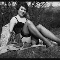 Vintage Stockings - Spick and Span
