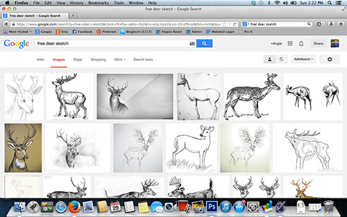 Searching For Free Deer Pictures On Google